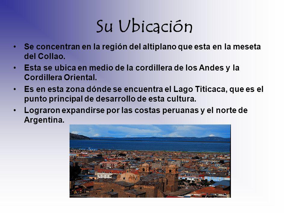 Su UbicaciónSe concentran en la región del altiplano que esta en la meseta del Collao.