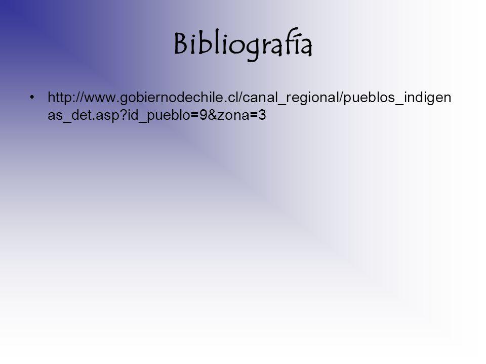 Bibliografía http://www.gobiernodechile.cl/canal_regional/pueblos_indigenas_det.asp id_pueblo=9&zona=3.