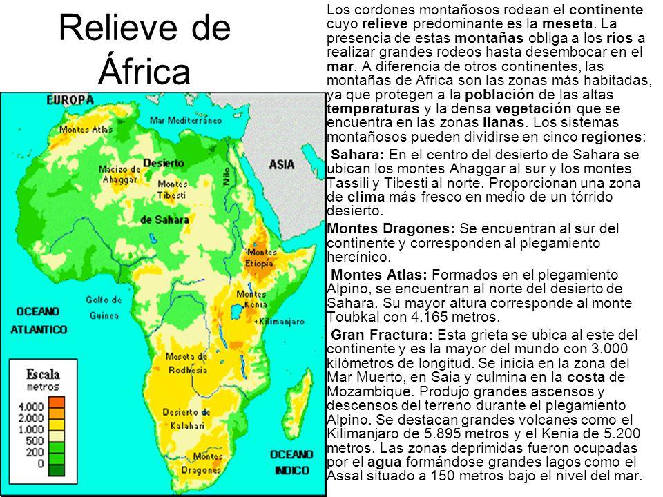 Los cordones montañosos rodean el continente cuyo relieve predominante es la meseta. La presencia de estas montañas obliga a los ríos a realizar grandes rodeos hasta desembocar en el mar. A diferencia de otros continentes, las montañas de Africa son las zonas más habitadas, ya que protegen a la población de las altas temperaturas y la densa vegetación que se encuentra en las zonas llanas. Los sistemas montañosos pueden dividirse en cinco regiones:
