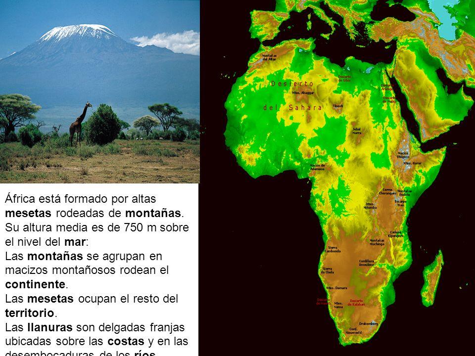Relieve de África África está formado por altas mesetas rodeadas de montañas. Su altura media es de 750 m sobre el nivel del mar: