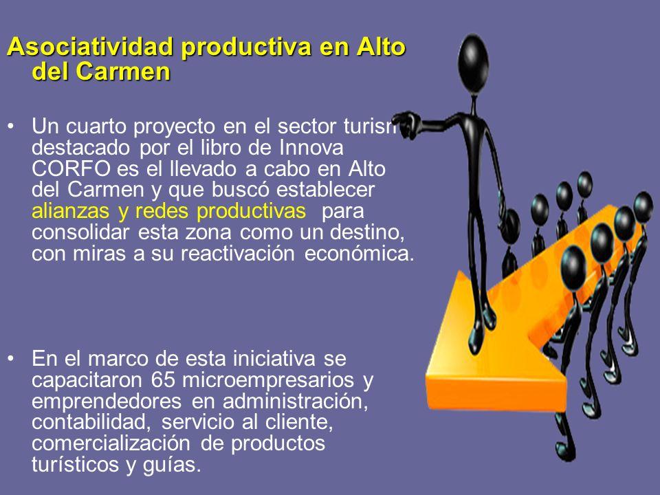 Asociatividad productiva en Alto del Carmen