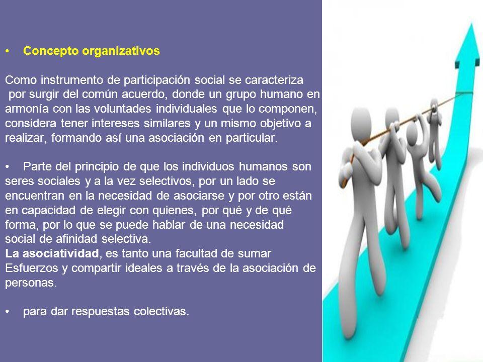 Concepto organizativos