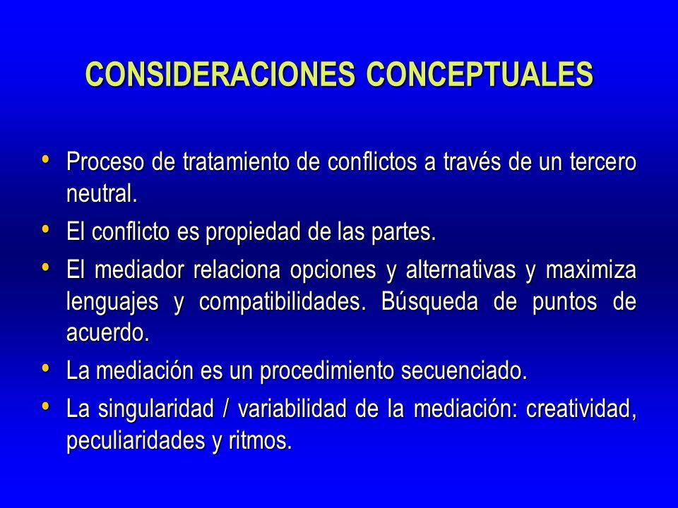 CONSIDERACIONES CONCEPTUALES