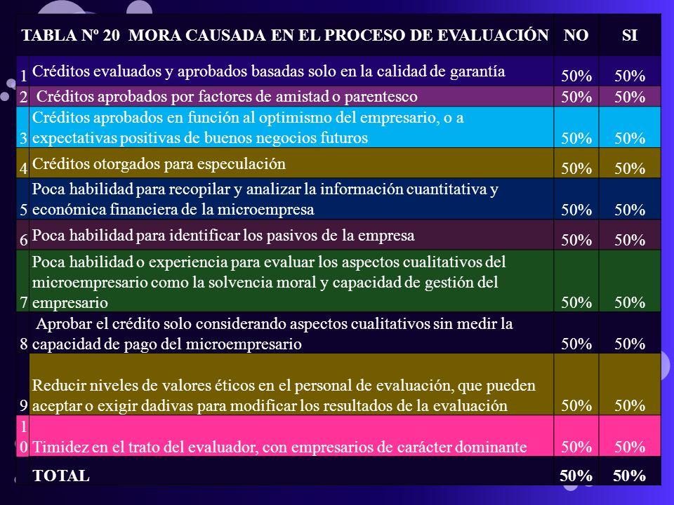 TABLA Nº 20 MORA CAUSADA EN EL PROCESO DE EVALUACIÓN
