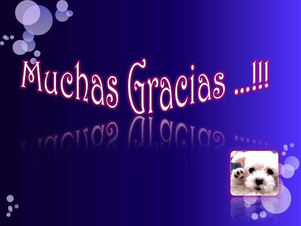 Muchas Gracias …!!!