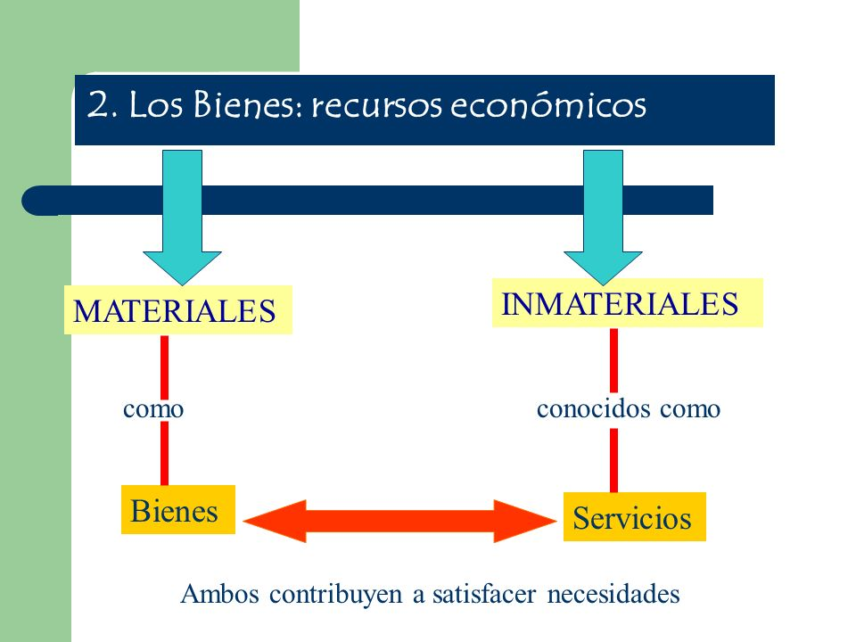2. Los Bienes: recursos económicos