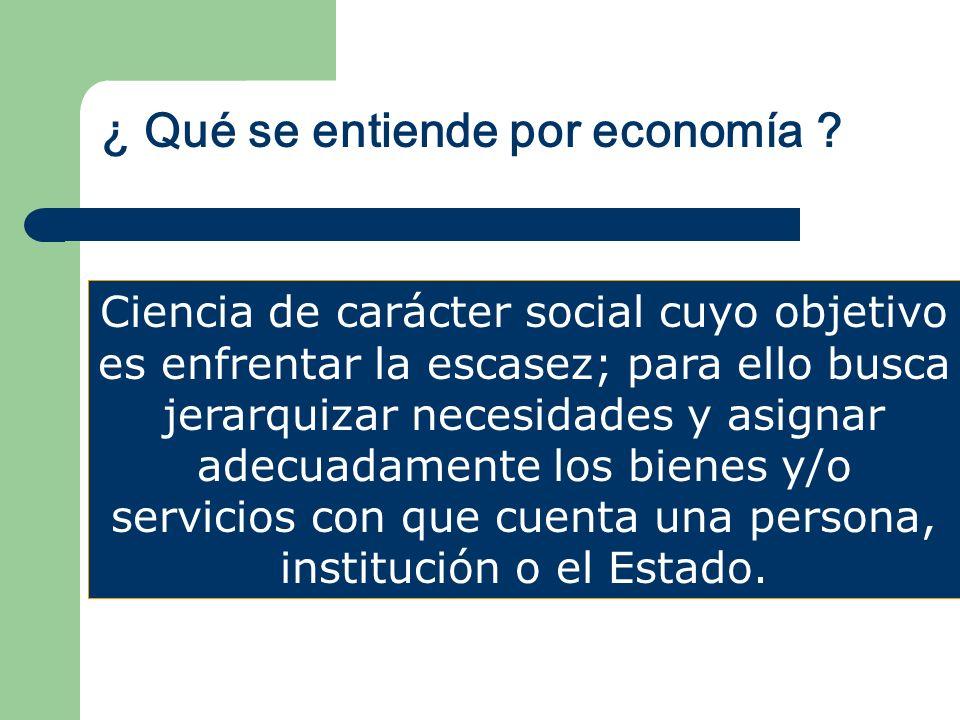 ¿ Qué se entiende por economía