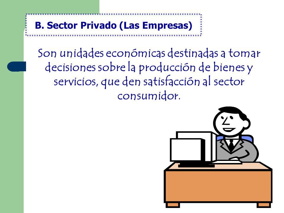 B. Sector Privado (Las Empresas)