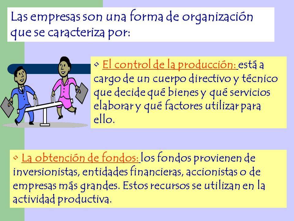 Las empresas son una forma de organización que se caracteriza por: