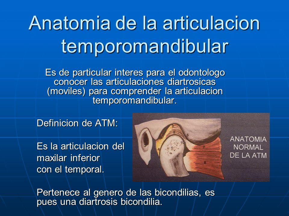 Anatomia de la articulacion temporomandibular