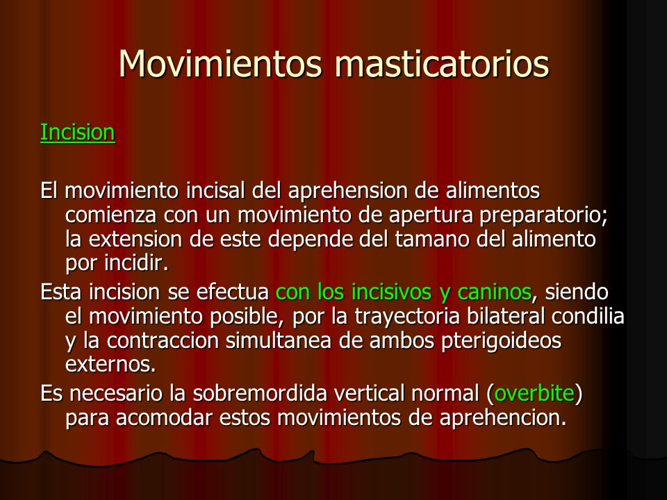 Movimientos masticatorios