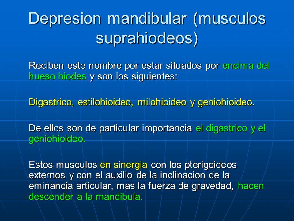 Depresion mandibular (musculos suprahiodeos)
