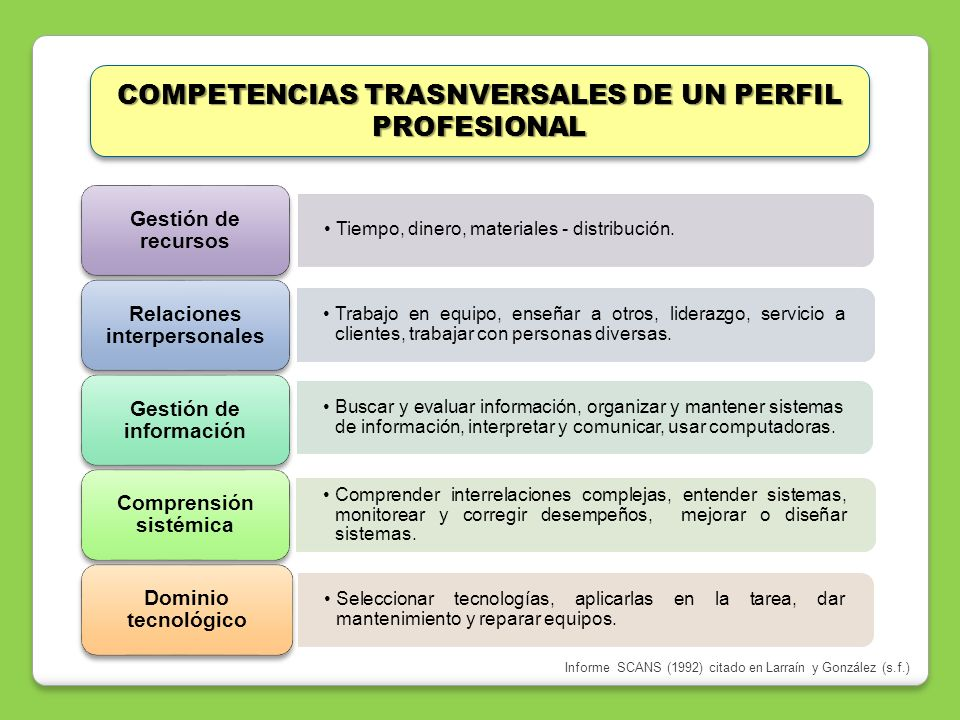 COMPETENCIAS TRASNVERSALES DE UN PERFIL PROFESIONAL