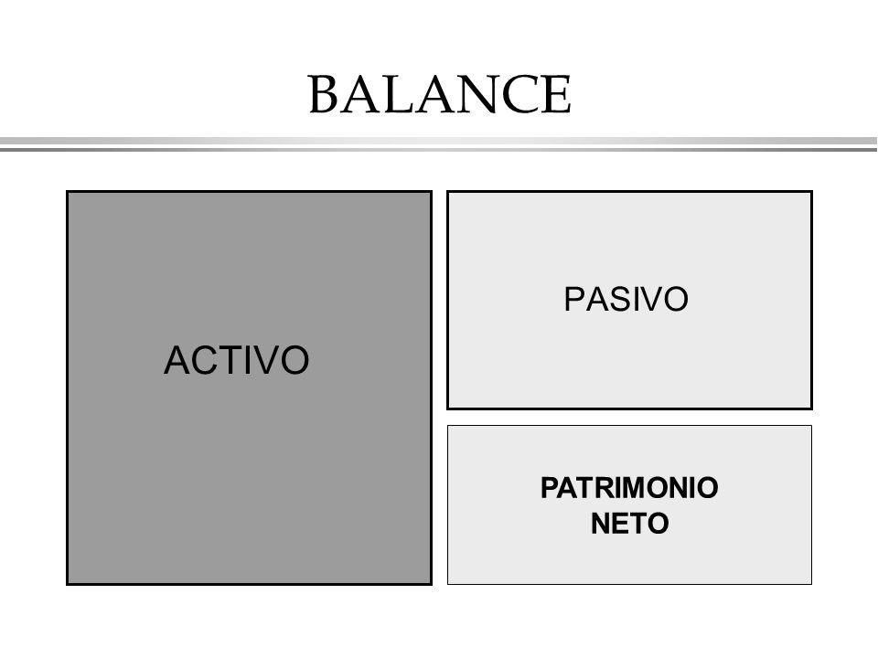 BALANCE ACTIVO PASIVO PATRIMONIO NETO PATRIMONIO NETO