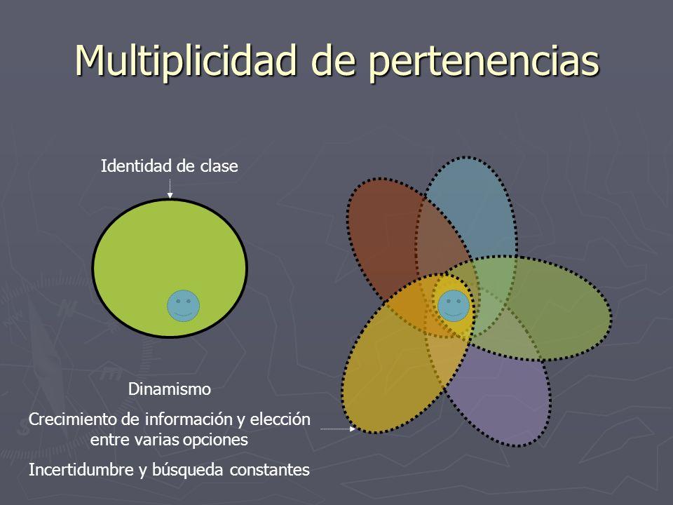Multiplicidad de pertenencias