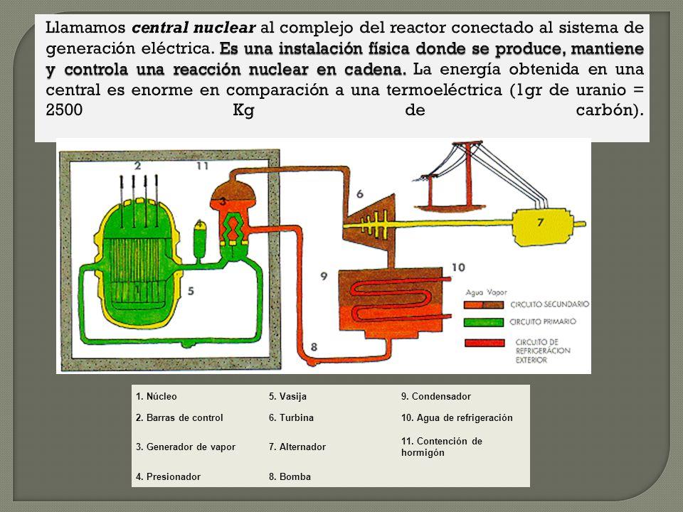 Llamamos central nuclear al complejo del reactor conectado al sistema de generación eléctrica. Es una instalación física donde se produce, mantiene y controla una reacción nuclear en cadena. La energía obtenida en una central es enorme en comparación a una termoeléctrica (1gr de uranio = 2500 Kg de carbón).