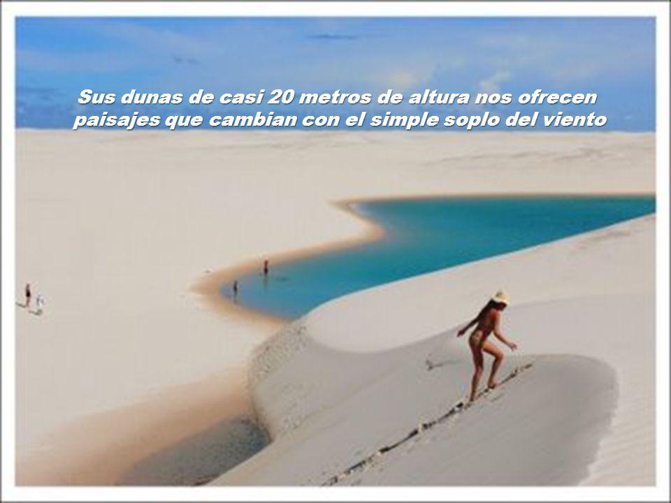 Sus dunas de casi 20 metros de altura nos ofrecen
