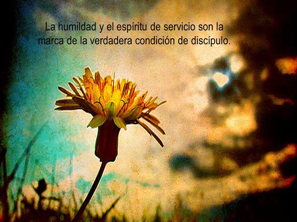 La humildad y el espíritu de servicio son la marca de la verdadera condición de discípulo.