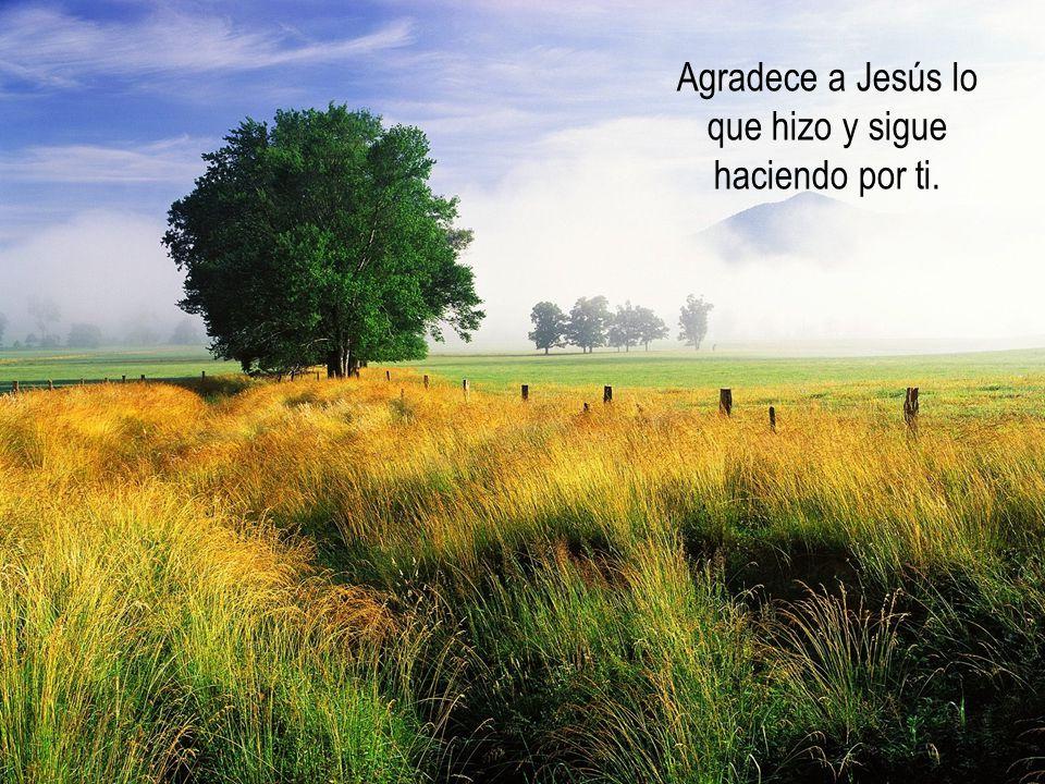 Agradece a Jesús lo que hizo y sigue haciendo por ti.