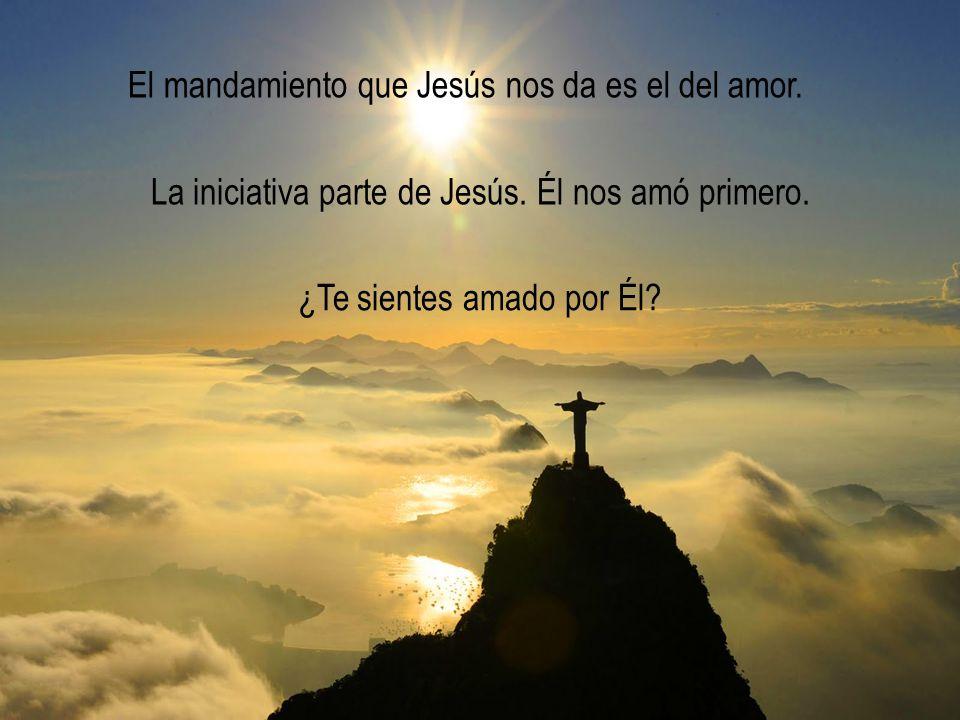 El mandamiento que Jesús nos da es el del amor.