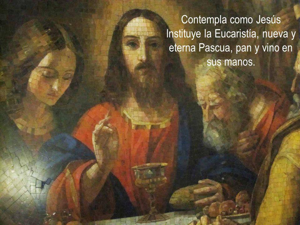Contempla como Jesús Instituye la Eucaristía, nueva y eterna Pascua, pan y vino en sus manos.
