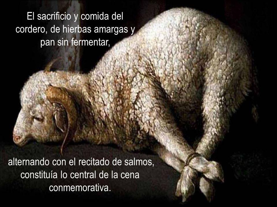 El sacrificio y comida del cordero, de hierbas amargas y pan sin fermentar,
