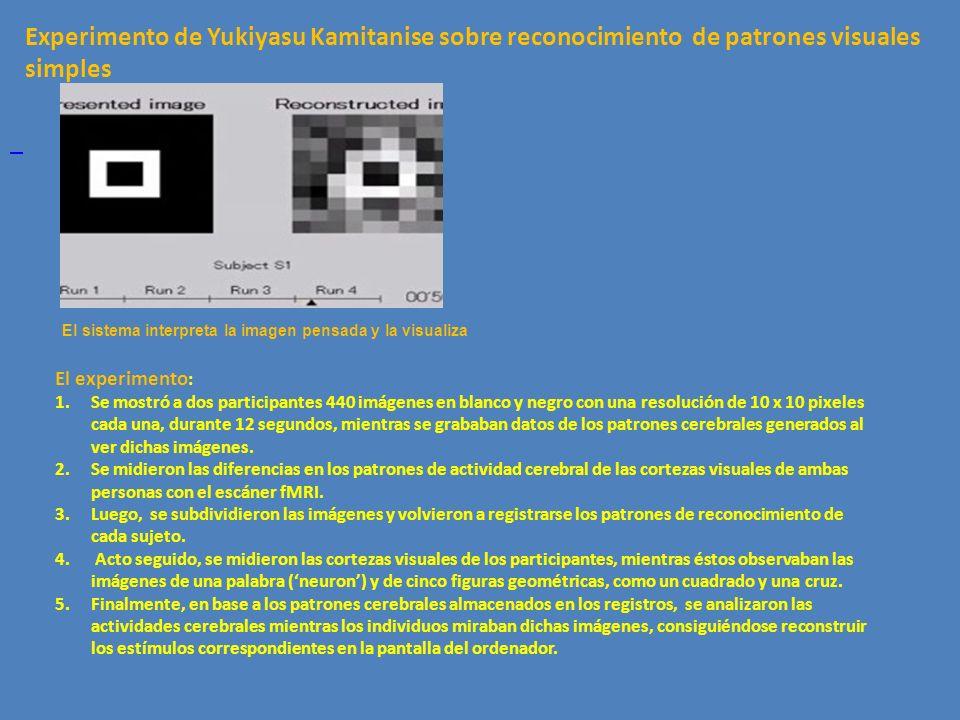Experimento de Yukiyasu Kamitanise sobre reconocimiento de patrones visuales simples.