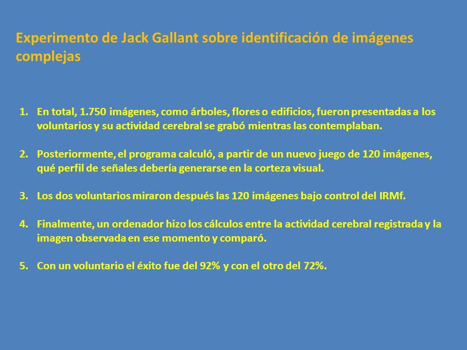 Experimento de Jack Gallant sobre identificación de imágenes complejas