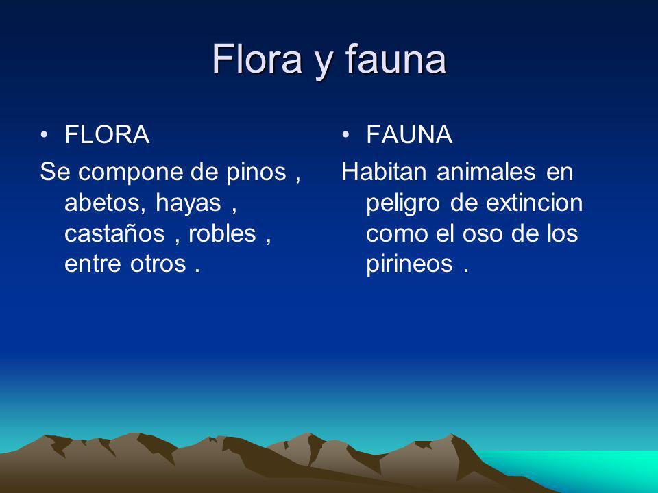 Flora y fauna FLORA. Se compone de pinos , abetos, hayas , castaños , robles , entre otros . FAUNA.