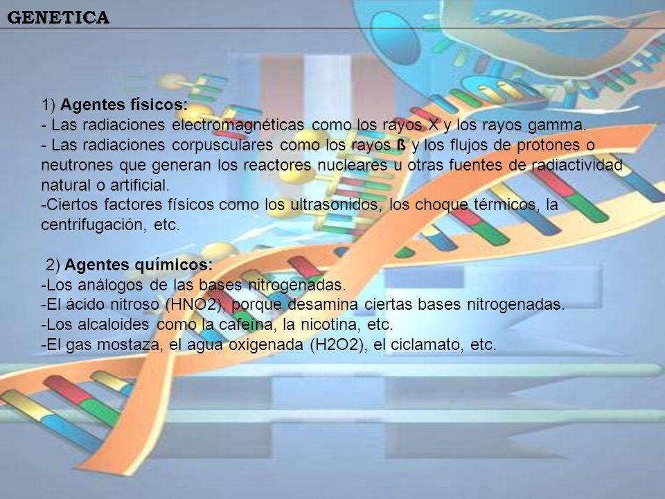 1) Agentes físicos: - Las radiaciones electromagnéticas como los rayos X y los rayos gamma.