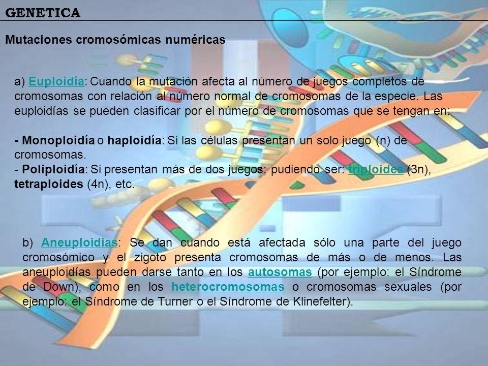 Mutaciones cromosómicas numéricas