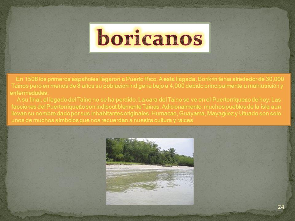 boricanos En 1508 los primeros españoles llegaron a Puerto Rico. A esta llagada, Borikén tenia alrededor de 30,000