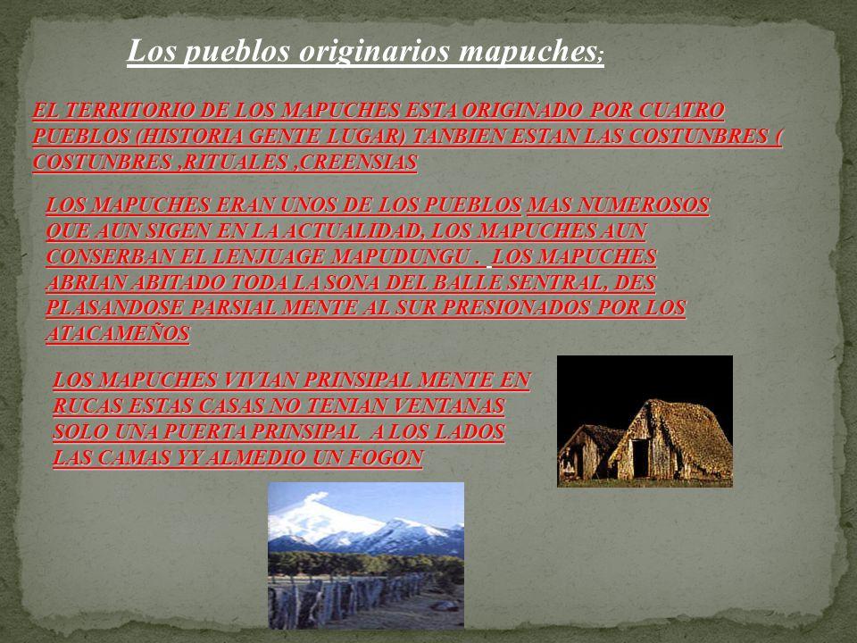 Los pueblos originarios mapuches;