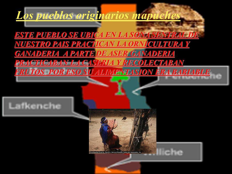 Los pueblos originarios mapuches
