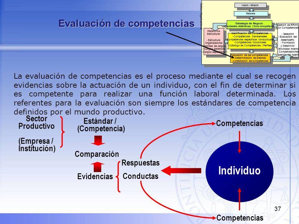 Individuo Evaluación de competencias Sector Estándar / Productivo