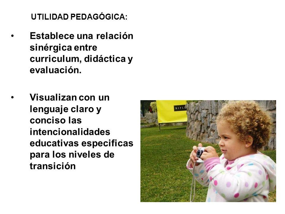 UTILIDAD PEDAGÓGICA: Establece una relación sinérgica entre curriculum, didáctica y evaluación.