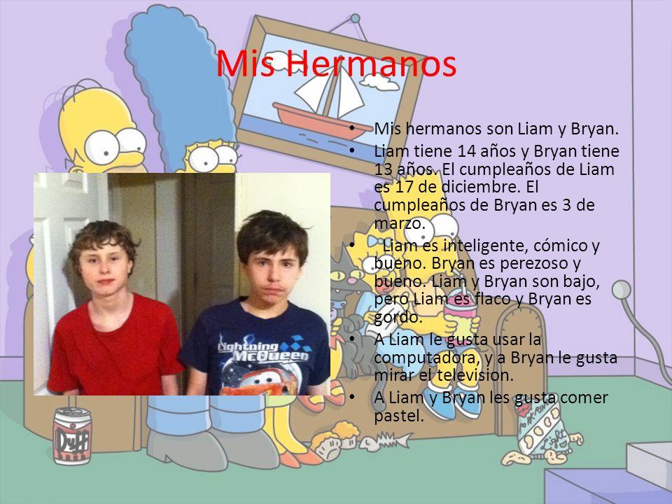 Mis Hermanos Mis hermanos son Liam y Bryan.