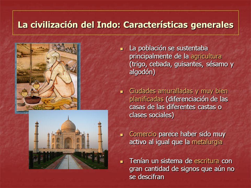La civilización del Indo: Características generales