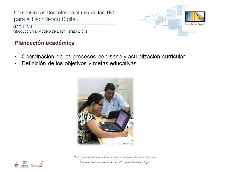 Planeación académica Coordinación de los procesos de diseño y actualización curricular.