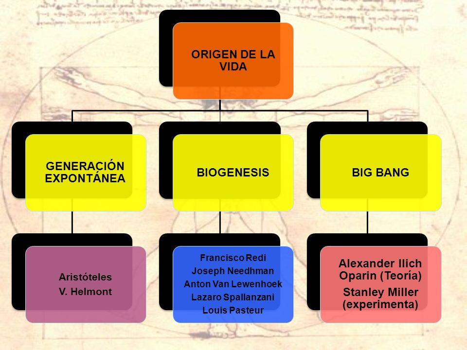 GENERACIÓN EXPONTÁNEA BIOGENESIS BIG BANG