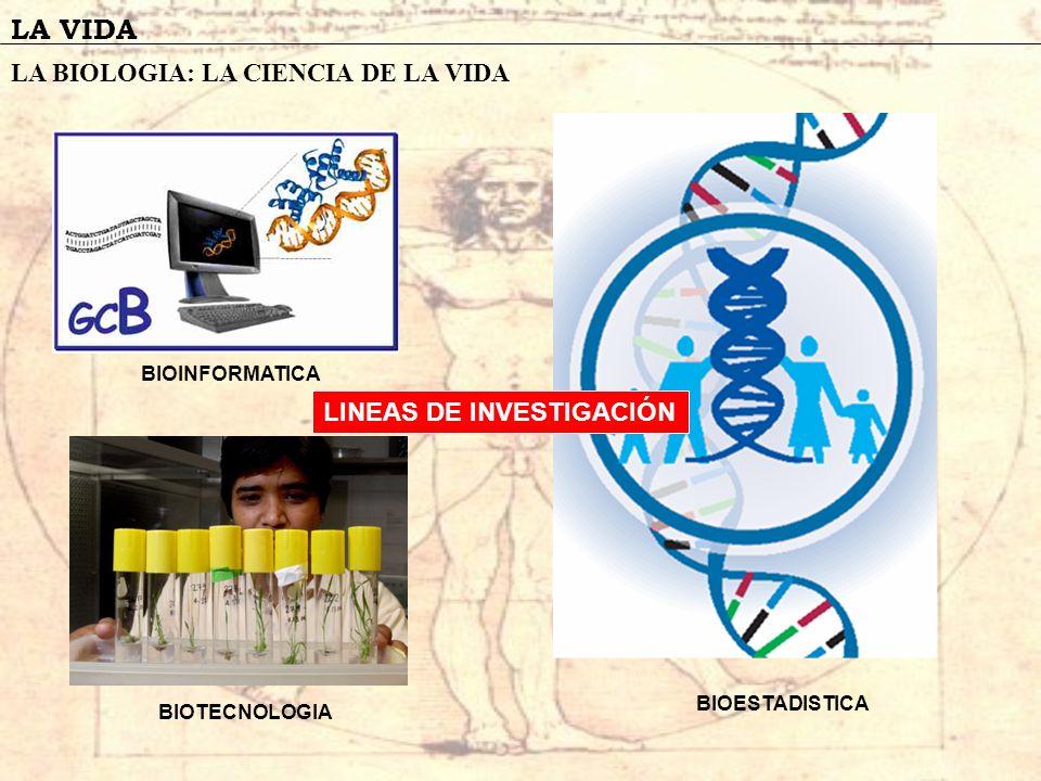 LA VIDA LA BIOLOGIA: LA CIENCIA DE LA VIDA LINEAS DE INVESTIGACIÓN