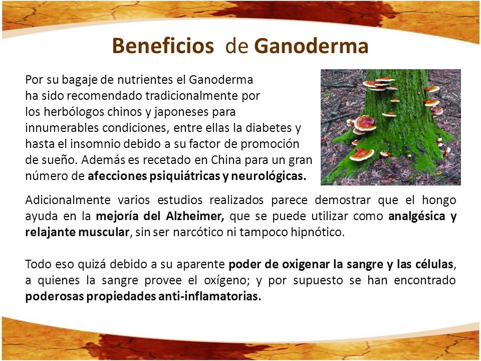 Beneficios de Ganoderma