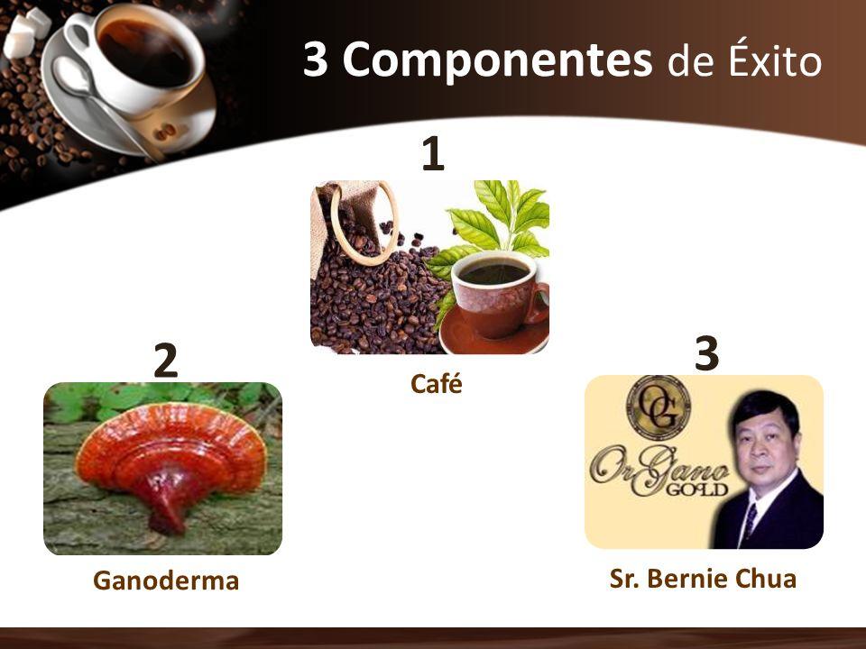 3 Componentes de Éxito 1 3 2 Café Ganoderma Sr. Bernie Chua