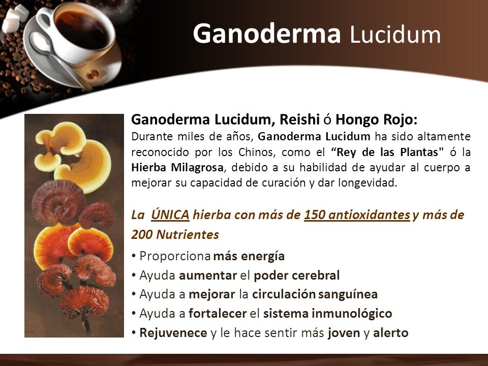 Ganoderma Lucidum Ganoderma Lucidum, Reishi ó Hongo Rojo: