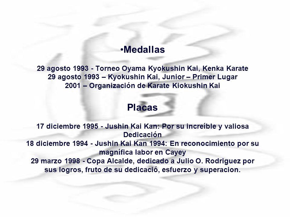 Medallas 29 agosto 1993 - Torneo Oyama Kyokushin Kai, Kenka Karate 29 agosto 1993 – Kyokushin Kai, Junior – Primer Lugar 2001 – Organización de Karate Kiokushin Kai Placas 17 diciembre 1995 - Jushin Kai Kan: Por su increíble y valiosa Dedicación 18 diciembre 1994 - Jushin Kai Kan 1994: En reconocimiento por su magnífica labor en Cayey 29 marzo 1998 - Copa Alcalde, dedicado a Julio O.