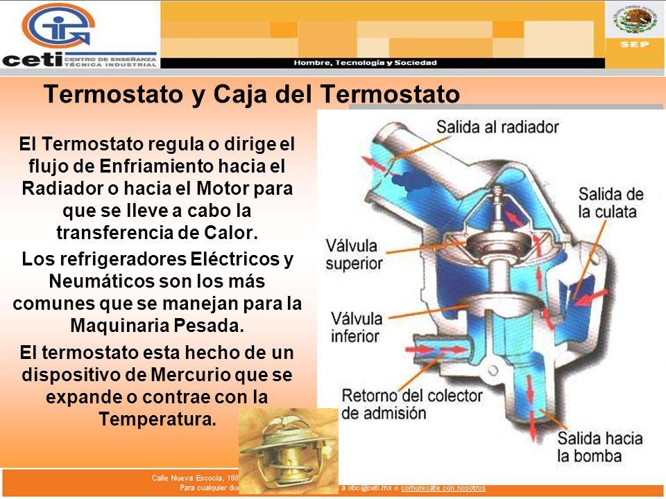 Termostato y Caja del Termostato