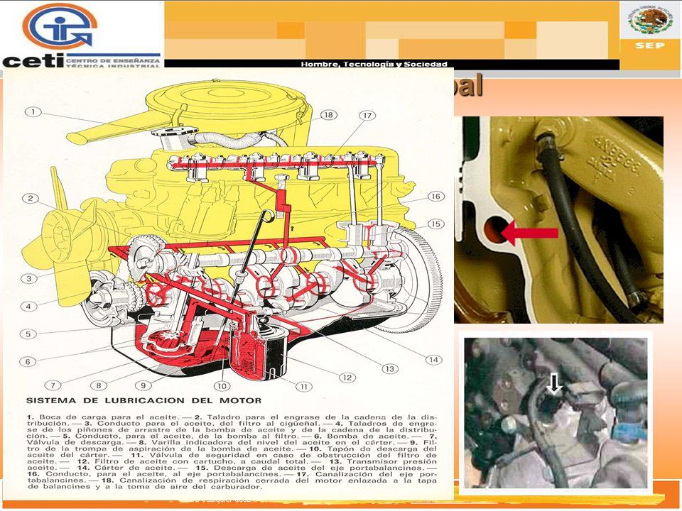 Vena PrincipalEs un distribuidor general del sistema de lubricación del motor.