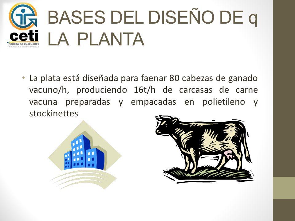 BASES DEL DISEÑO DE q LA PLANTA