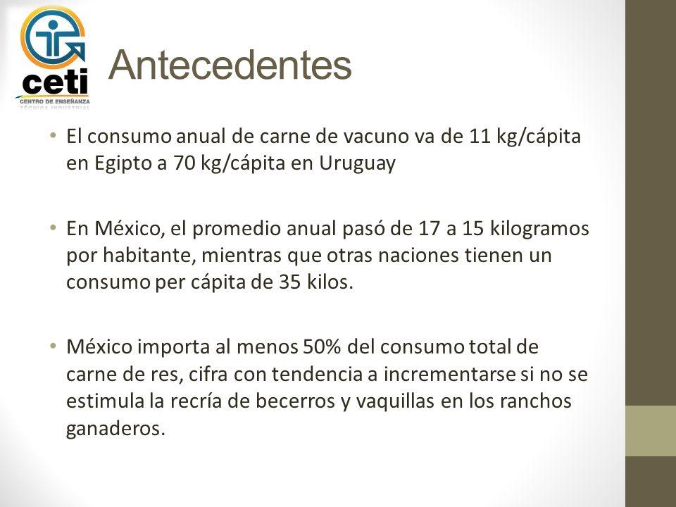 Antecedentes El consumo anual de carne de vacuno va de 11 kg/cápita en Egipto a 70 kg/cápita en Uruguay.