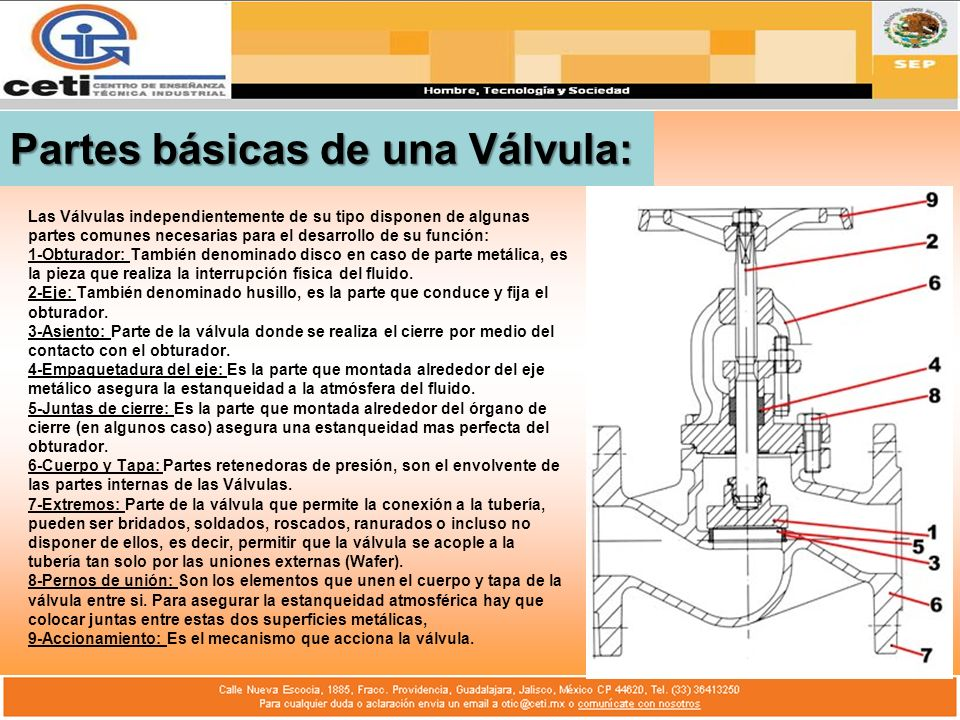 Partes básicas de una Válvula: